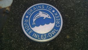 Storm Drain Marking | Rudee Inlet Foundation