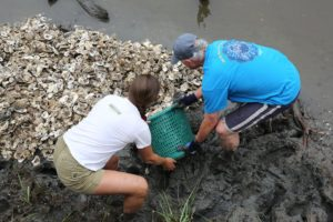 Sanctuary Oyster Reef Project | Rudee Inlet Foundation