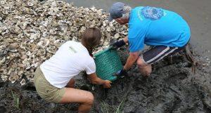 Oyster-Reef-Installation-RIF2